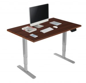 DT110_NEW_GREY_BRN-2_1-300x287 Sit/Stand